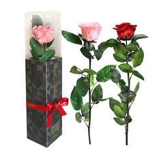 Rosa Preservada, Regalo de San Valentín, Rosa Eterna, Floristería Online, Rosas Naturales, Floristerías en Sevilla, Floristería Macarena